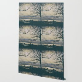 nature bn Wallpaper