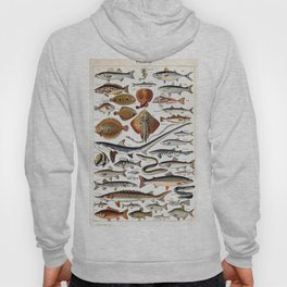 Adolphe Millot - Poissons B - French vintage nautical poster Hoody