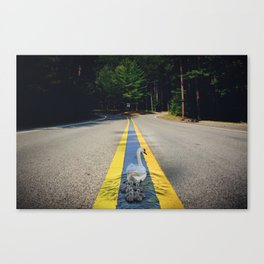 An Unlikely Path Canvas Print