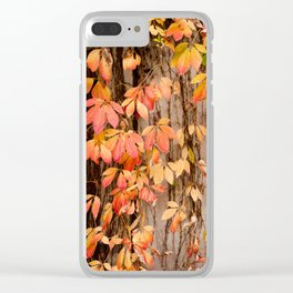 Vitaceae family ivy wall abstract Parthenocissus quinquefolia Clear iPhone Case