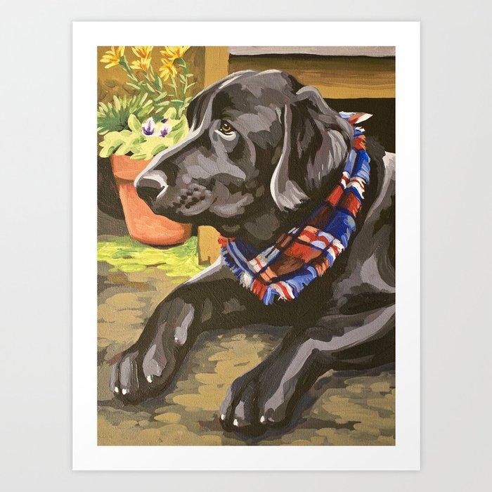 Bodie Dog Portrait Art Print