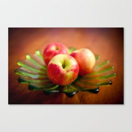 Apple on Mom's green plate Canvas Print