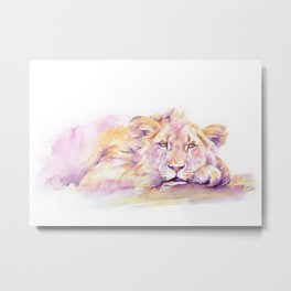Lion _ Too hot to hunt Metal Print