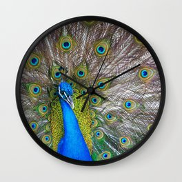 The Peacock fancy feathers dress Wall Clock