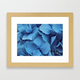 Sunny Day Blues Framed Art Print