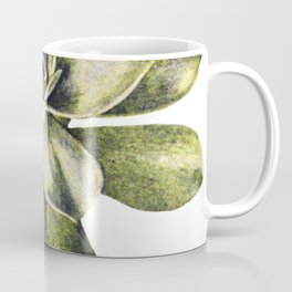 Vintage Succulent Watercolor Coffee Mug