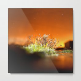 Face away from the oncoming storm Metal Print
