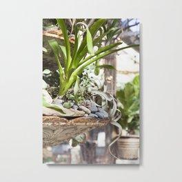 Fountain Garden Metal Print