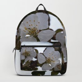 Cherry blossoms on cherry branch Backpack