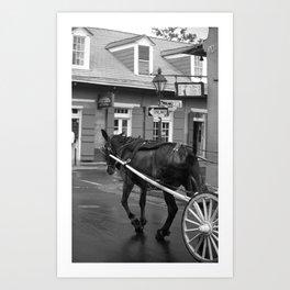 New Orleans - Bourbon Street Horse 2004 Art Print