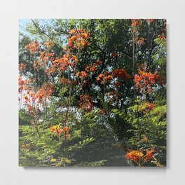 Red Flowers and Vibrant Trees Scenic Art Photo Metal Print