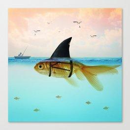 goldfish with a shark fin Canvas Print