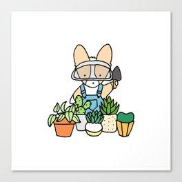 Corgi Garden Succulents Canvas Print