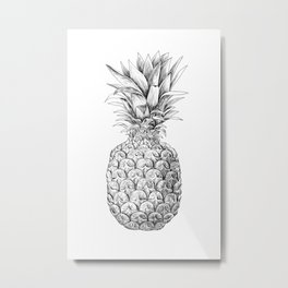 Pineapple, tropical fruit illustration Metal Print