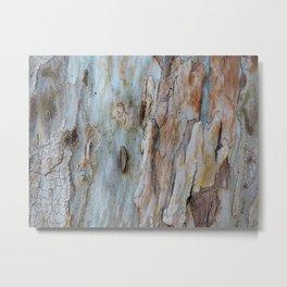Bark V Metal Print