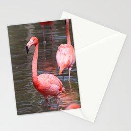Pink Palooza Stationery Cards