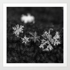 Clump of snowflakes Art Print