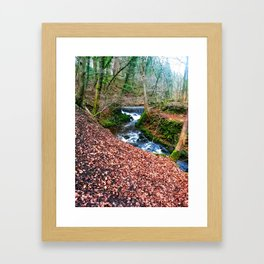 Walk in the Woods Framed Art Print