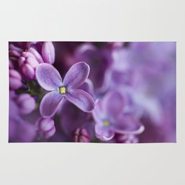 Purple Lilac Rug