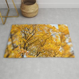 Yellow leaves autumn trees Rug