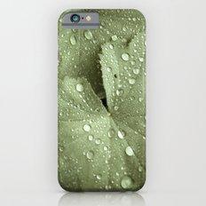 Sunshower Canvas iPhone 6s Slim Case