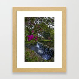 Flower Creek Framed Art Print