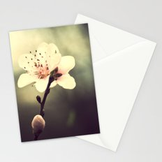loreak Stationery Cards