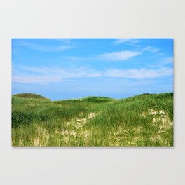 Highland Dunes Canvas Print