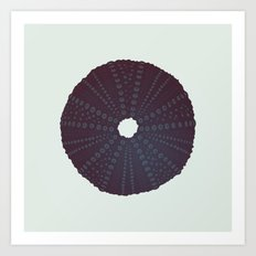 Sea's Design - Urchin Skeleton (Black) Art Print
