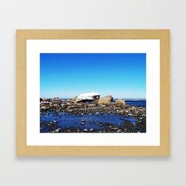 Stranded Iceberg Framed Art Print