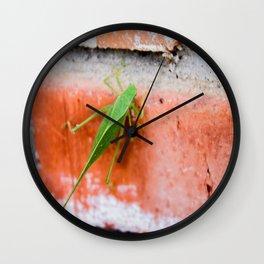 Leaf Bug Wall Clock