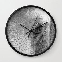Through the Eye of the Elephant Wall Clock