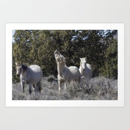 Happy Traveler with Mom and Pallaton Art Print