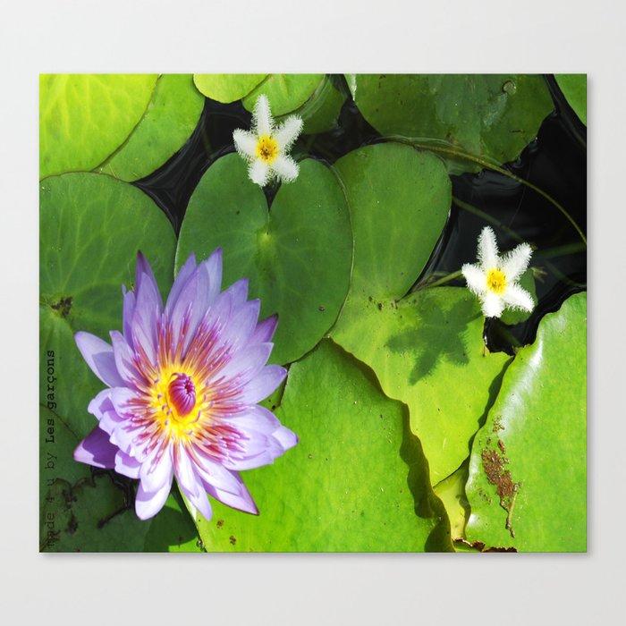 Fleur de nénuphar Canvas Print