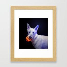 Koga Framed Art Print