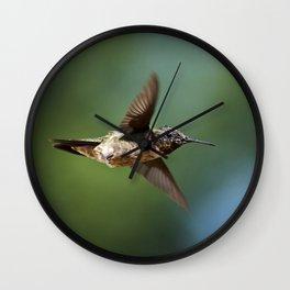 Hummingbird Swoop Wall Clock