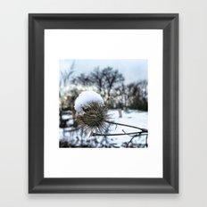 thistles and felt Framed Art Print