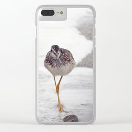 Greater Yellowlegs  Couple Stalk the Cameraman Clear iPhone Case