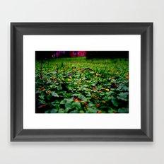 Meadow no.2 Framed Art Print
