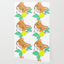 Mr. Oliver the cat Wallpaper