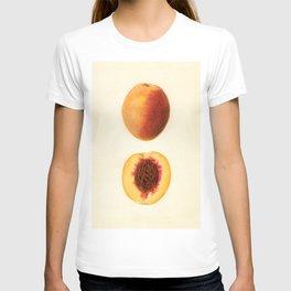 Vintage Illustration of a Sliced Peach T-shirt