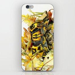 Eastern Box Turtle iPhone Skin