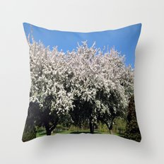 Crab Apple Trees in the Spring Throw Pillow