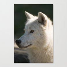 Arctic Wolf Portrait Canvas Print