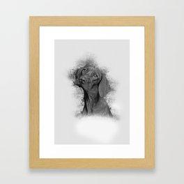 Vizsla Art Framed Art Print