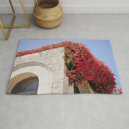 Vibrant Red Flowers Over Stone Building Rug