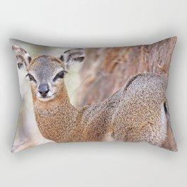 Klipspringer, Africa wildlife Rectangular Pillow