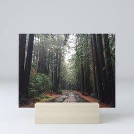 Road through the Redwoods Mini Art Print