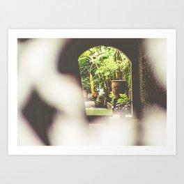 New Orleans Courtyard Art Print