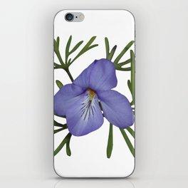 Viola Pedata, Birds-foot Violet #society6 #spring iPhone Skin